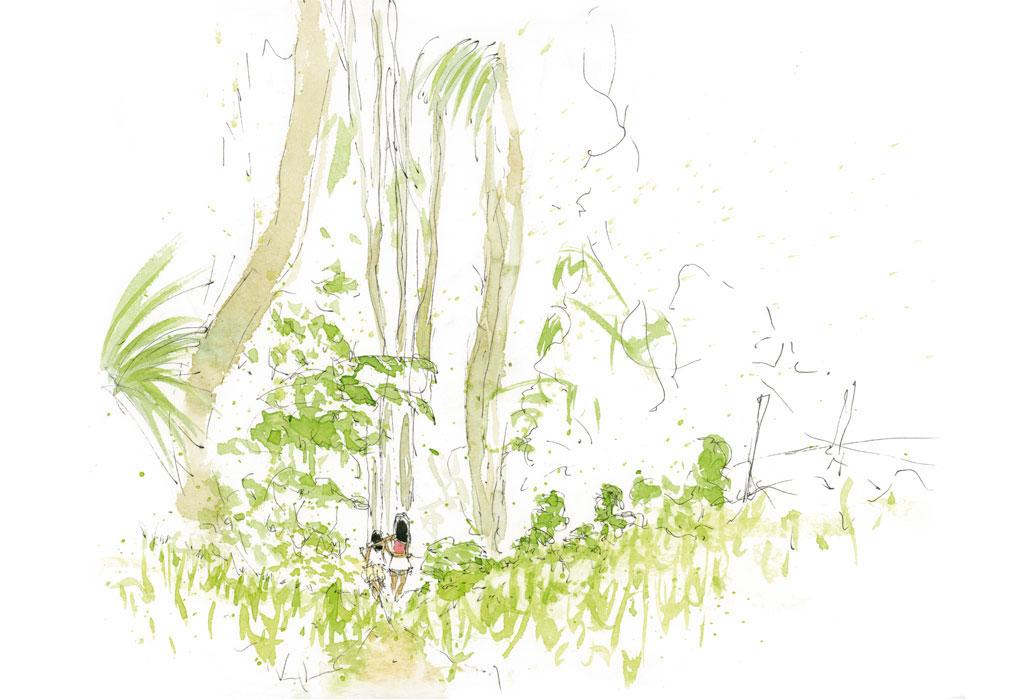 Amazonia_Jamaraqua_2011_270-x-210-mm_2